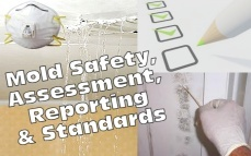 Mold Basics: Safety, Assessment, Reporting & Standards Online Training & Certification